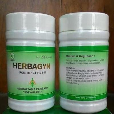 Herbagyn obat obat kolesterol